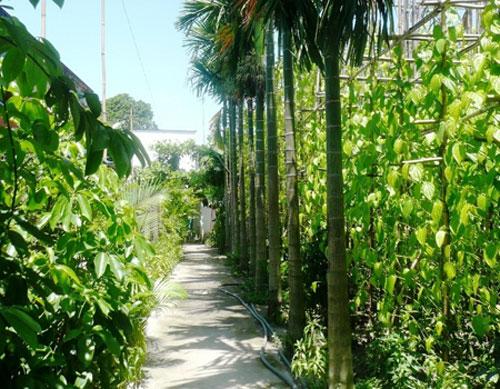 Mười tám thôn vườn trầu thuộc xã Bà Điểm, huyện Hóc Môn
