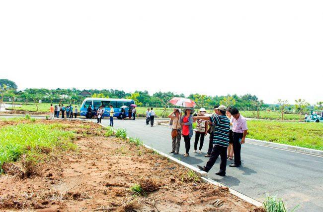Xu hướngđầu tư đất nềnkhiến cho giá đất TP Hồ Chí Minh tăng lên