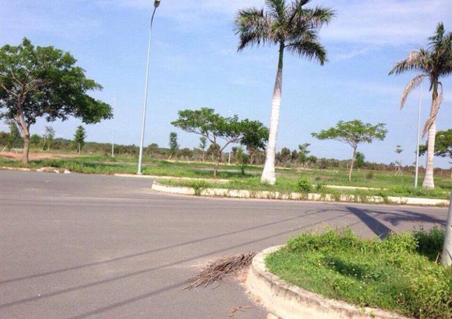 Bất động sản đất nền Tây Bắc Sài Gòn